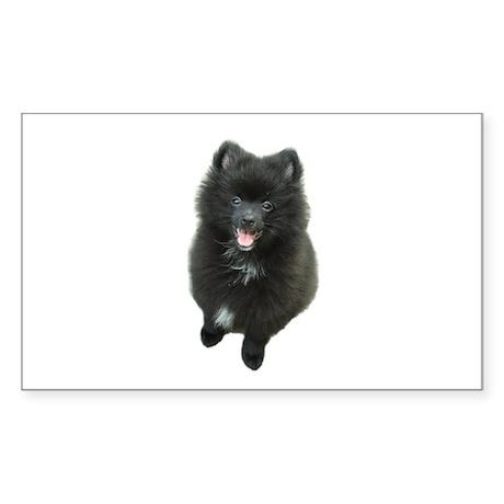 Adorable Black Pomeranian Puppy Dog Sticker (Recta