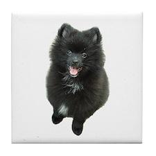 Adorable Black Pomeranian Puppy Dog Tile Coaster