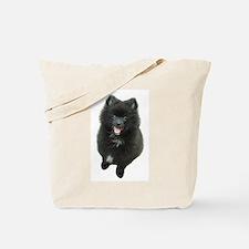 Adorable Black Pomeranian Puppy Dog Tote Bag