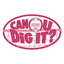 Can U Dig It Tie Dye Decal