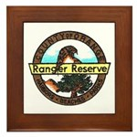 Orange Ranger Reserve Framed Tile