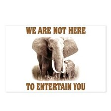 We Are Not Here Postcards (Package of 8)