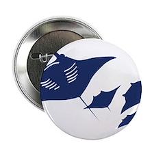 manta ray rochen scuba diving fish tauchen animal