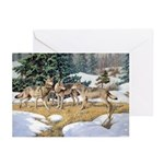 Wolves Christmas Cards (Pk of 10)