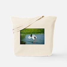 Australian Jabiru in a flap Tote Bag