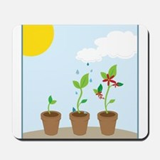 Seedlings Mousepad