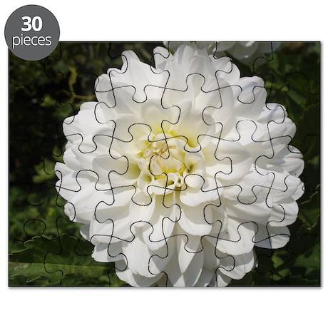 Dahlia Puzzle
