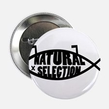 "Natural Selection Dead Fish 2.25"" Button"