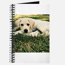 Cute Puppy Lab Journal