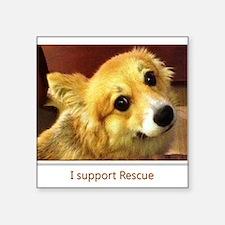 """I Support Rescue Square Sticker 3"""" x 3"""""""