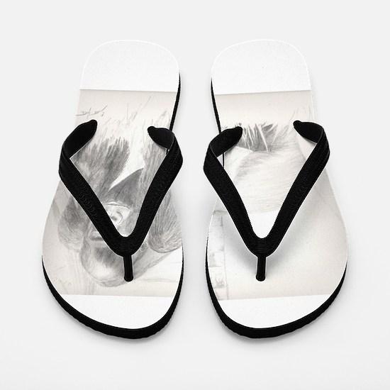 Gorilla Flip Flops