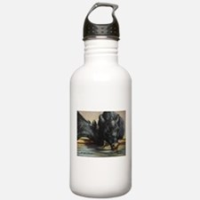 Two Black Angus Water Bottle