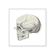 "Skull Square Sticker 3"" x 3"""
