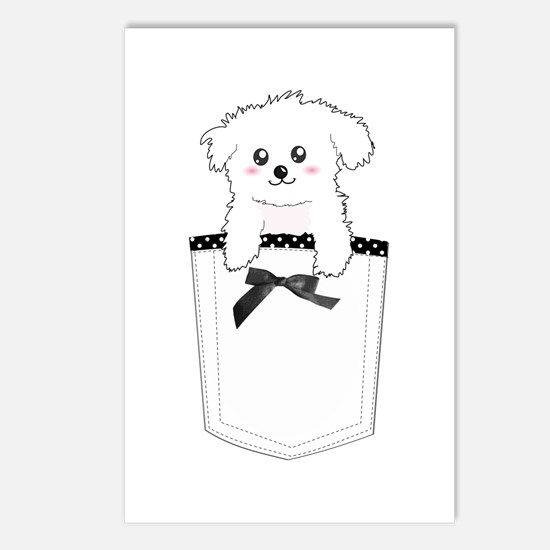 Cute puppy dog in pocket Postcards (Package of 8)