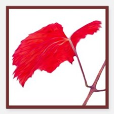 "Red Grape Leaf Square Car Magnet 3"" X 3"""