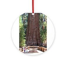 Unique Sequoia trees Ornament (Round)