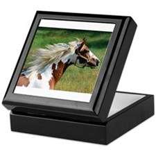 My Paint Horse Profile Keepsake Box