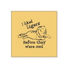 I Liked Ligers Before They Were Cool Square Sticke