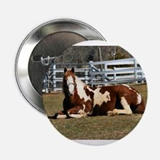 "My Paint Horse Sunbathing 2.25"" Button"