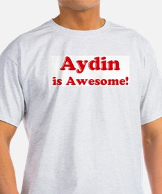 Aydin is Awesome Ash Grey T-Shirt