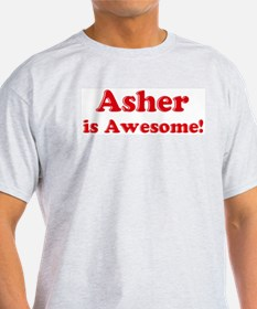 Asher is Awesome Ash Grey T-Shirt