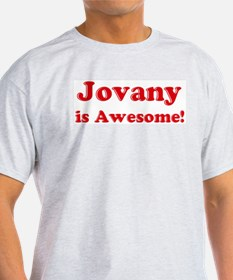 Jovany is Awesome Ash Grey T-Shirt