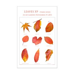 Leaves X9 Posters