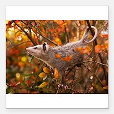 """Autumn Opossum Square Car Magnet 3"""" x 3"""""""