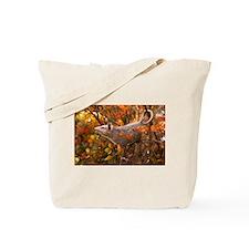 Autumn Opossum Tote Bag
