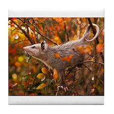 Autumn Opossum Tile Coaster
