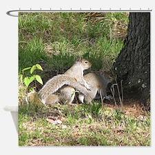 Squirrel Love Shower Curtain