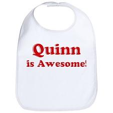 Quinn is Awesome Bib