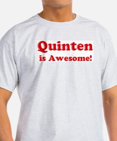 Quinten is Awesome Ash Grey T-Shirt