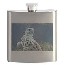Falcon Flask