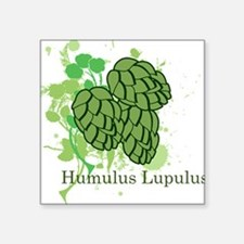Humulus Lupulus II Rectangle Sticker