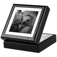 Nosey Hedgehog Keepsake Box