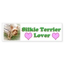 Silkie Terrier 3 Bumper Sticker