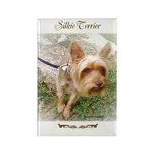 Silkie Terrier 3 Rectangle Magnet (100 pack)