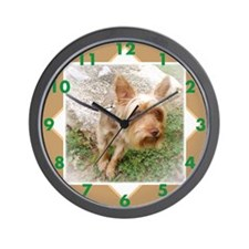 Silkie Terrier 3 Wall Clock