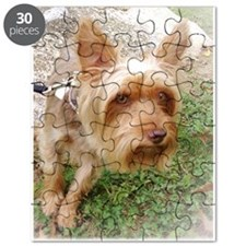 Silkie Terrier 3 Puzzle