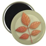 White Ash Leaves Magnet