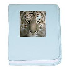 liger baby blanket