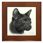 Havana Brown Cat Framed Tile