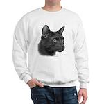 Havana Brown Cat Sweatshirt