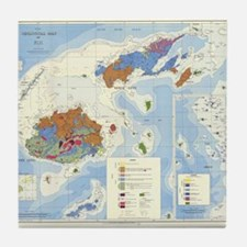 Fiji Map Tile Coaster