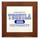 Tequila University Framed Tile
