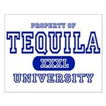 Tequila University Small Poster