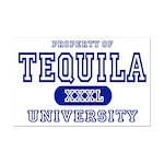 Tequila University Mini Poster Print