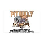 Find the Pit Bull 35x21 Wall Decal