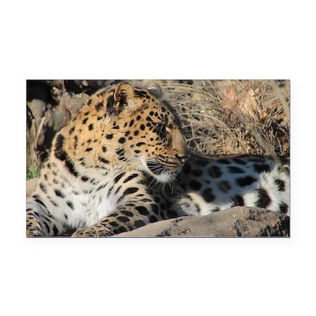 Amur Leopard Rectangle Car Magnet